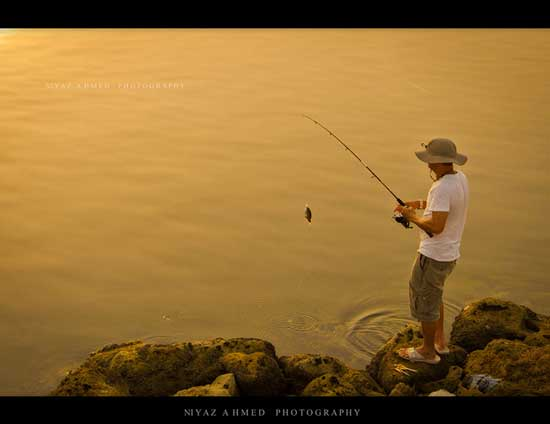 Young man fishing has caught a small fish evening mood with sunset reflecting off water.